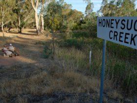 Honeysuckle Creek Walking Track