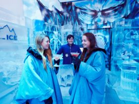 Sharing a drink at IceBar Melbourne