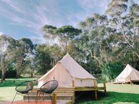 Glamping, Retreat, Outdoors, Nature