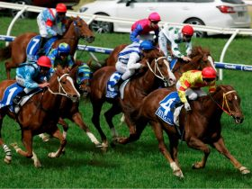 wangratta races