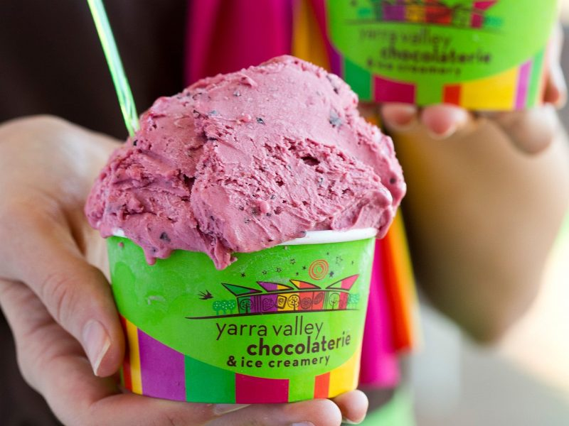 Irresistible Ice Cream Festival
