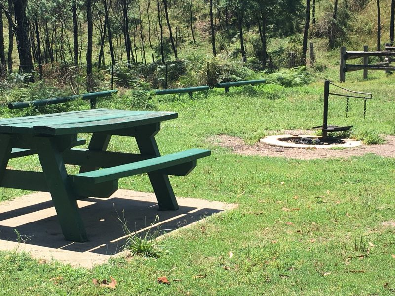 Picnic and fire pit
