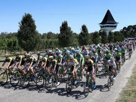 The peleton rolls out of Mitchelton Wines