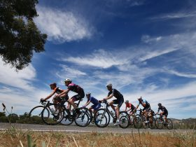 The peleton makes it's way out of Wangaratta