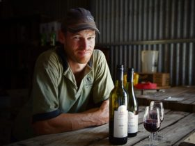 Winemaker Ross Gehrig