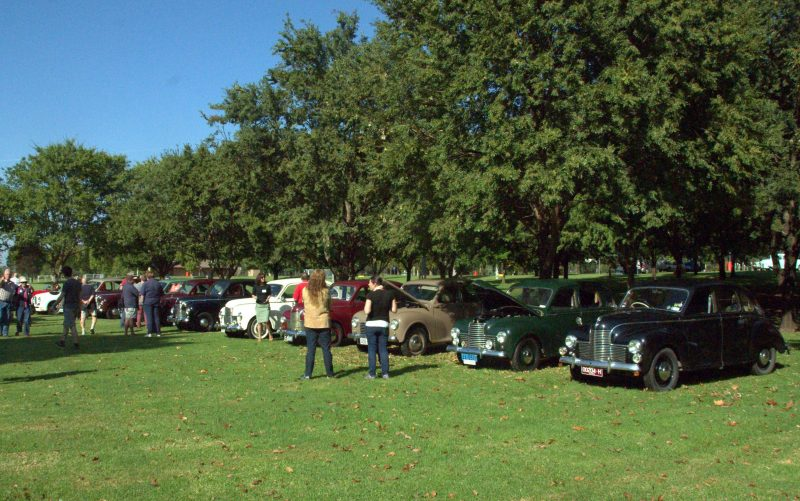 People admiring the Jowett Javelins on display at the Cowra national rally 2016