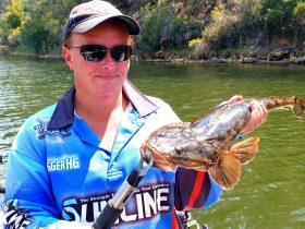 charter fishing lake tyers dusky flathead