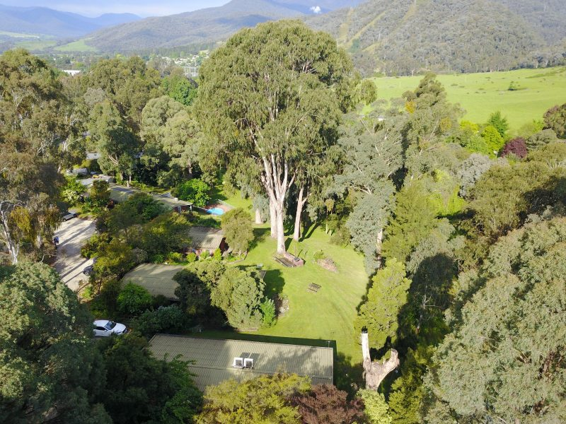 Kiewa Country Cottages