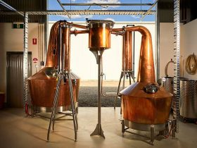 Visit Kilderkin Distillery in Ballarat for a distillery tour and a flight of gin