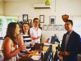 Dal Zotto Cellar Door Winery Tours