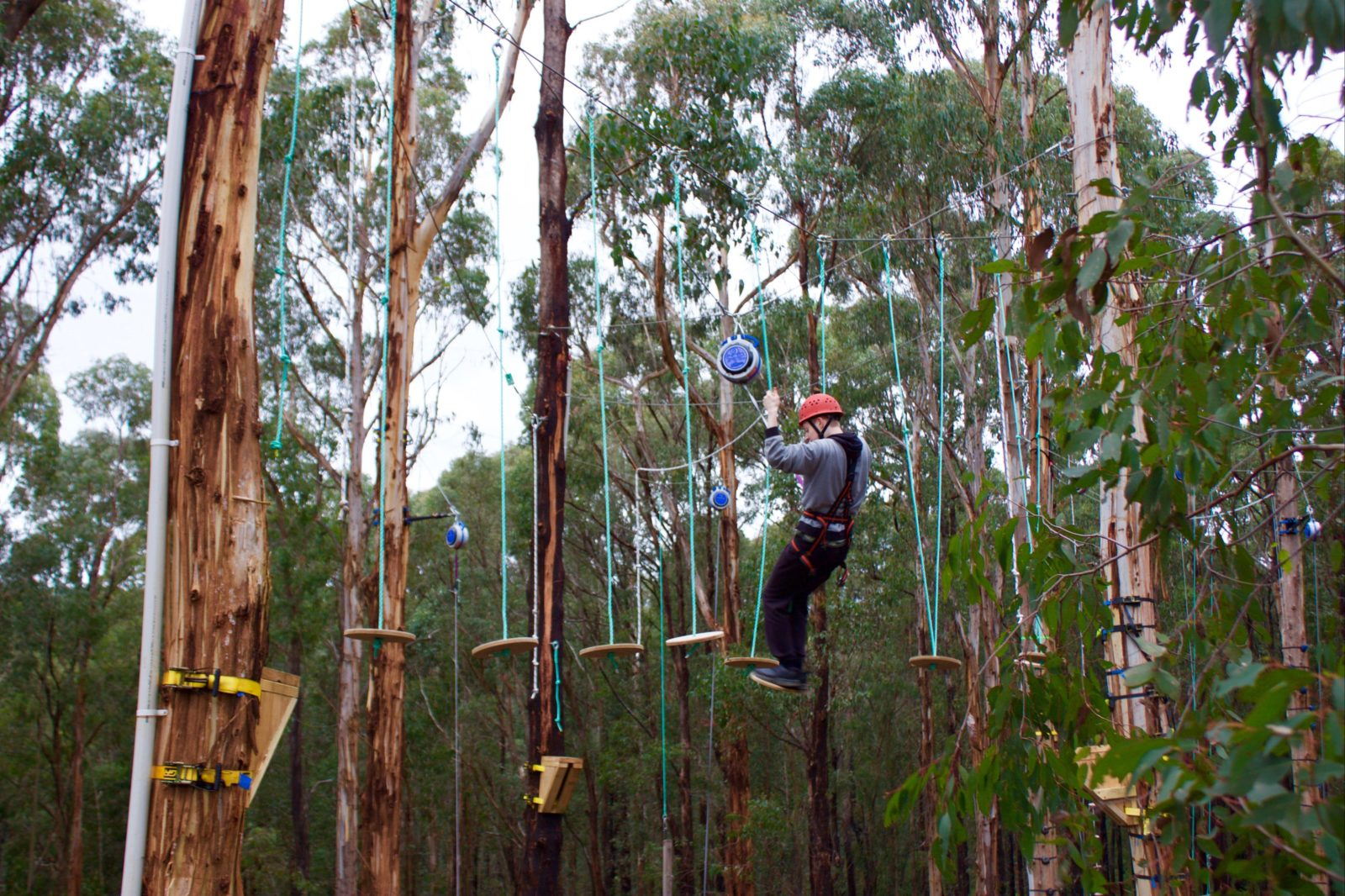 One of many treetop experiences in the eco nature facility.