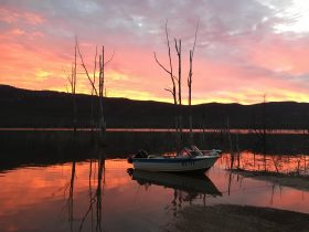 Sunrise at Lake Bellfield