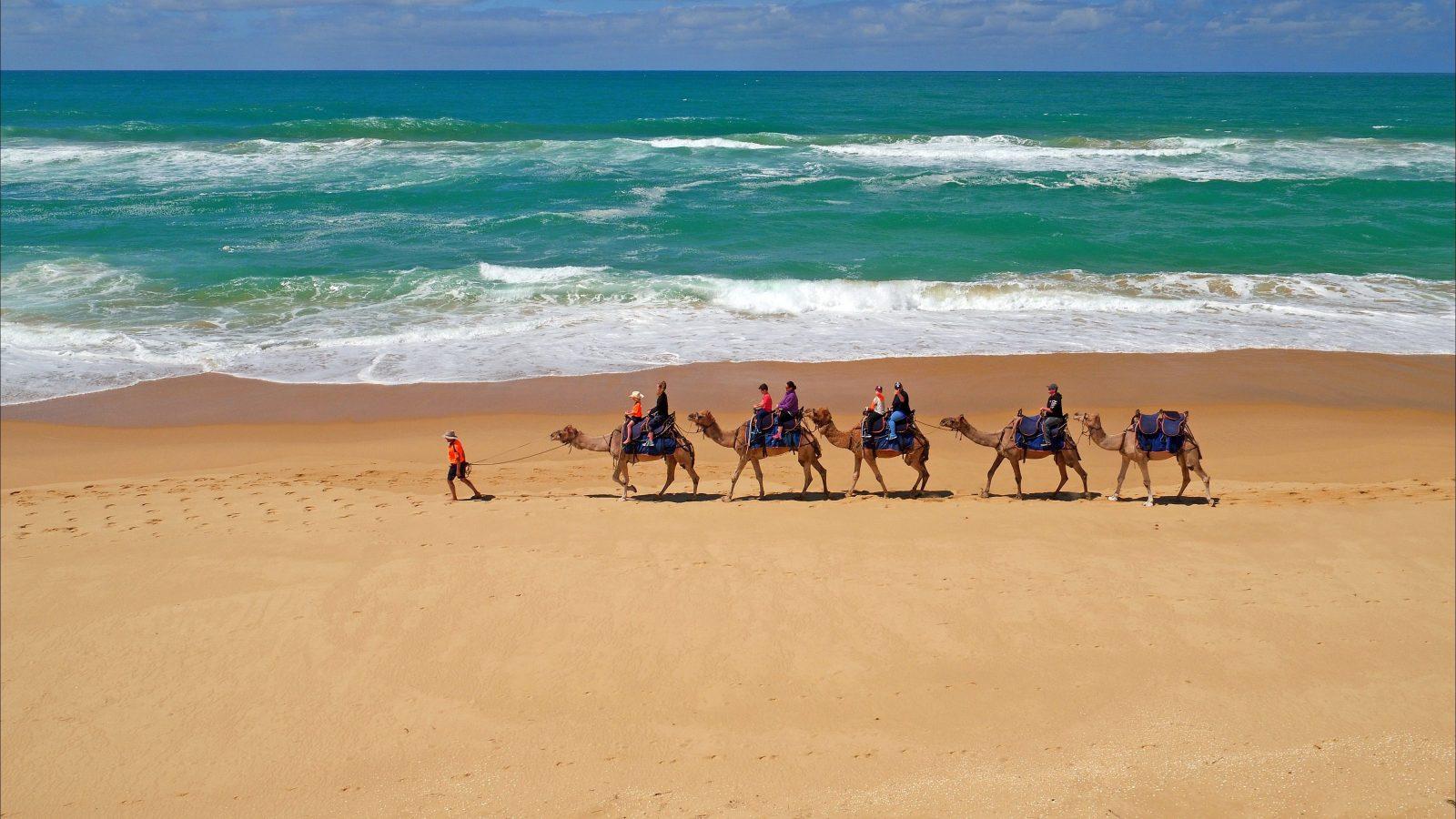 Lakes Entrance Beach Camel Rides