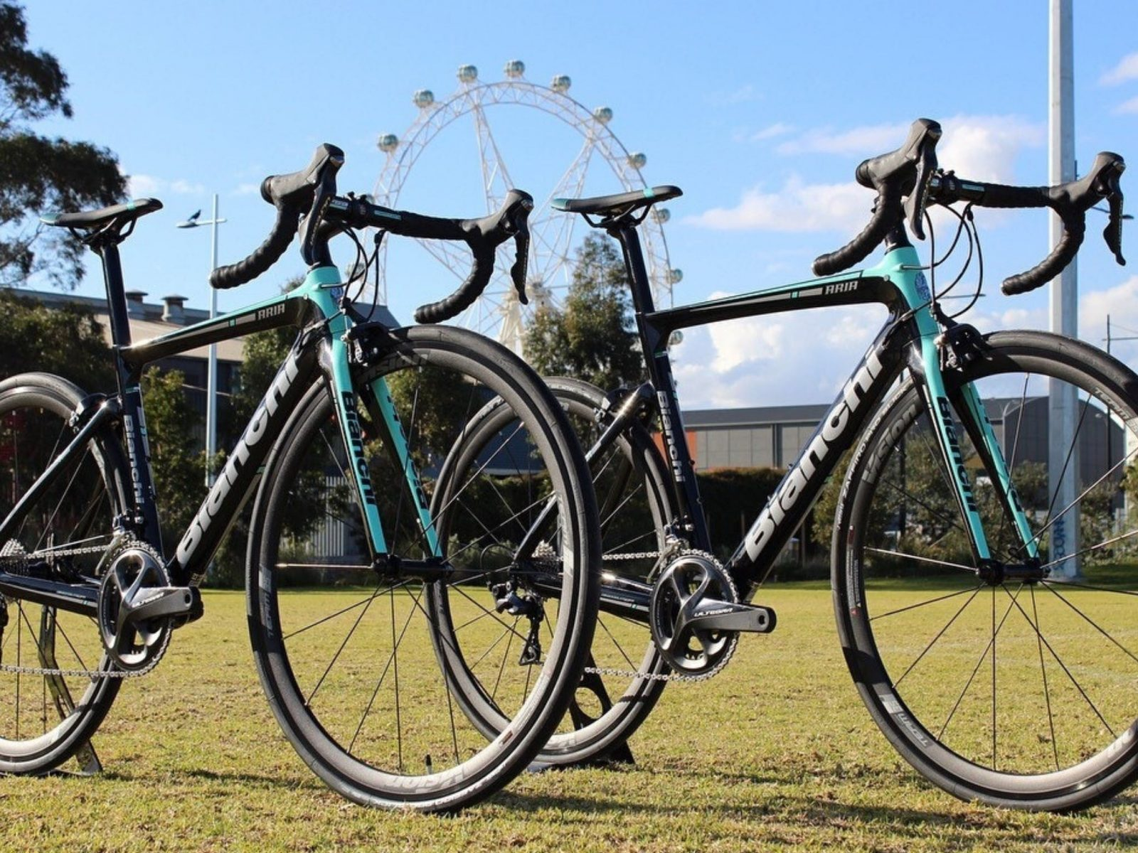 road bike rental melbourne guided tour melbourne bianchi rent guide hire