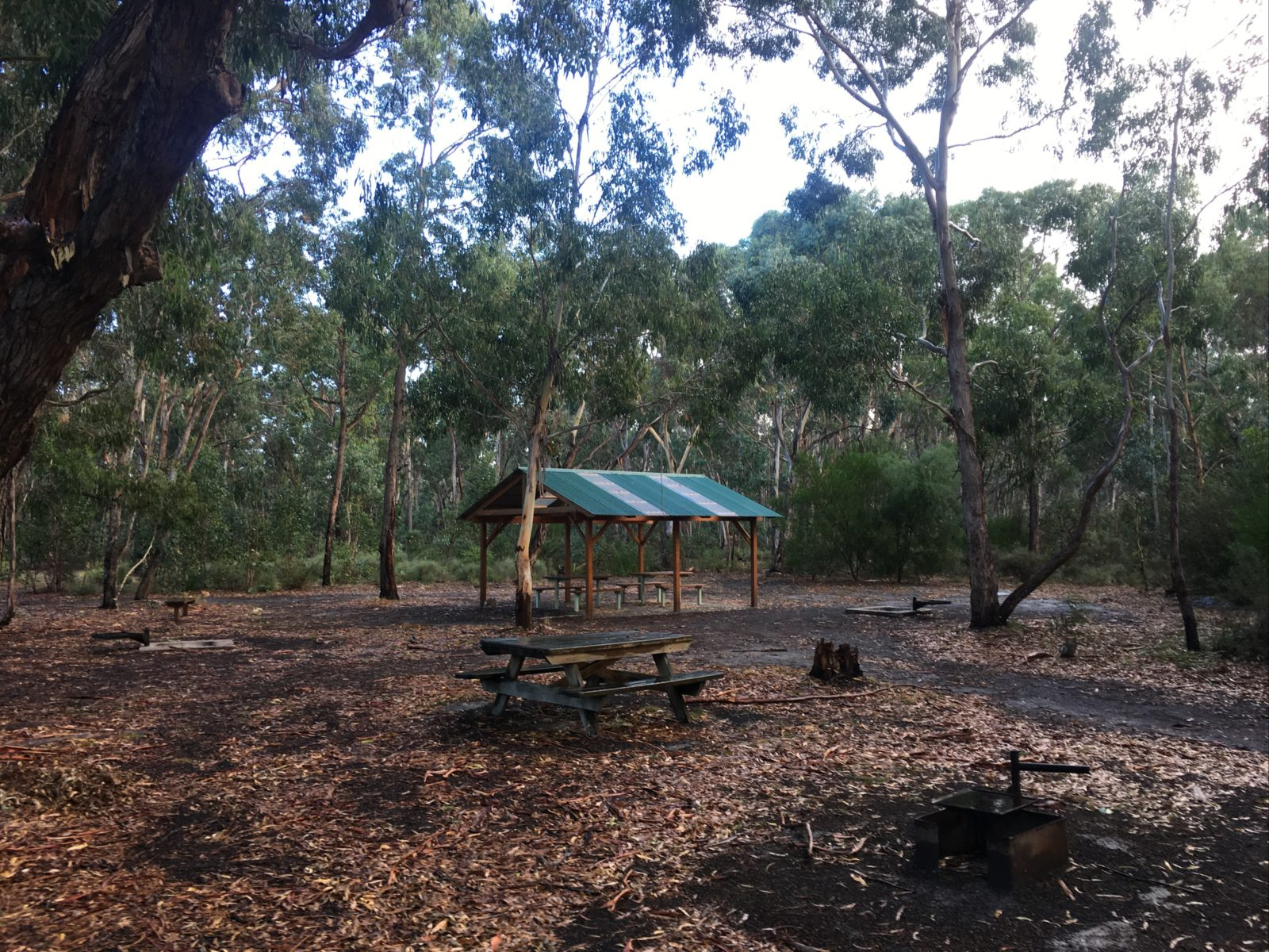 Long Lead Picnic Area and Campground