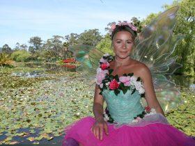 Meet the Fairy Queen