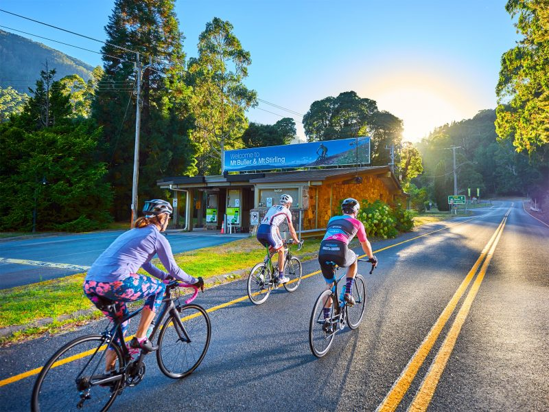 Road cycling on the Mt Buller Tourist Road