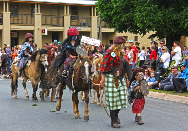 Parade   Mansfield High Country Festival