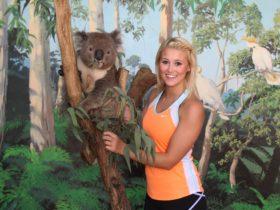 Maru Koala and Animal Park