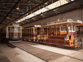 Explore the rich history of Melbourne's iconic trams at the Melbourne Tram Museum