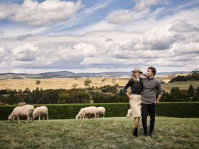 Australian merino wool garments - Australian made and owned.