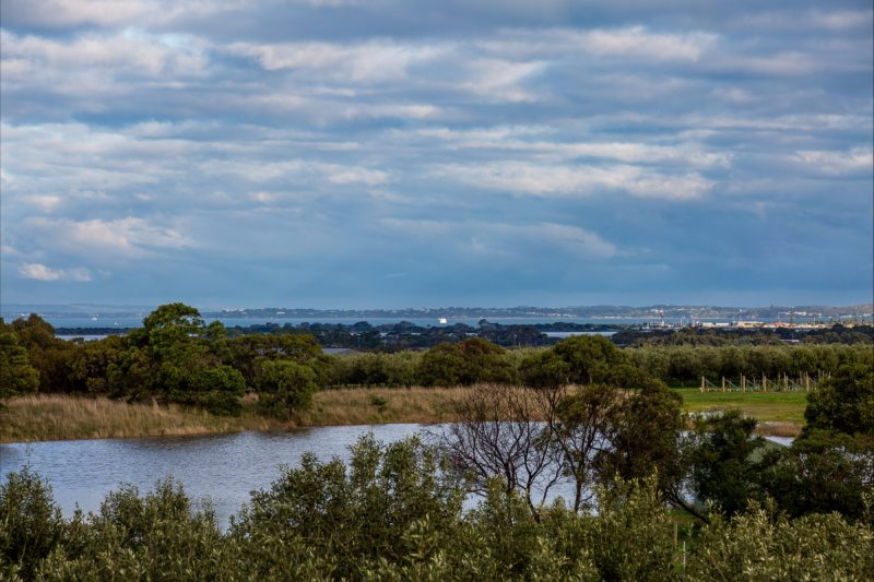 Panoramic views across the emerging vineyards to Point Lonsdale, Queenscliff and Point Nepean