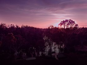 Mitchelton is situated in Nagambiem on the verdant banks of the Goulburn River