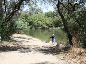 Fishing the Goulburn River