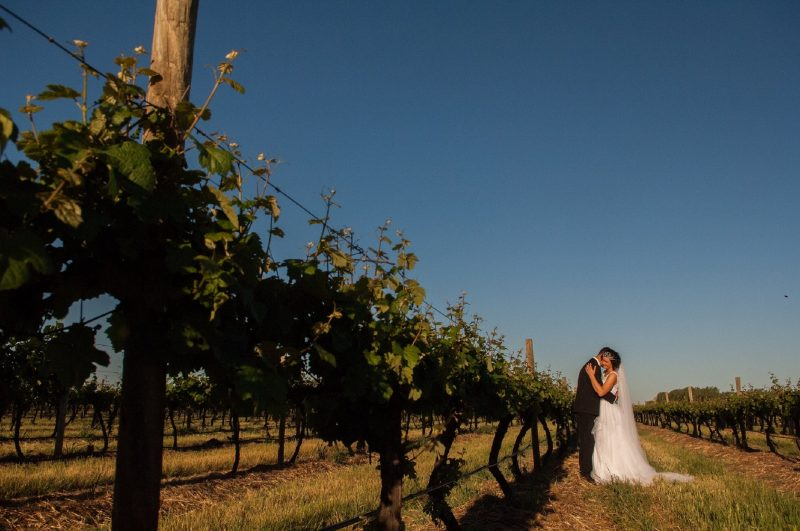 Wedding photo at Monichino wines