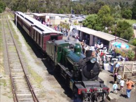 Train at Moorooduc Station