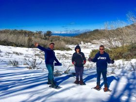 Snow Shoe Rambles