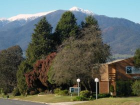 Mountain Creek Motel Bar And Restaurant provides accommodation & 3 cuisines Indian Japaneses, Aussie