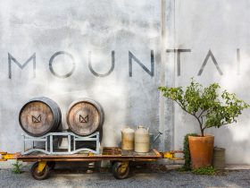 Branding piece, photo of the front of the cellar door with barrels, lemon tree and the word MOUNTAIN