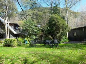 Mountain View Front Garden
