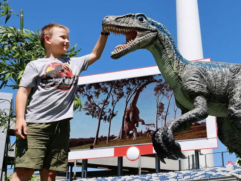 Young boy patting life-like dinosaur while Jurassic Park movie plays in background at Kardinia Park