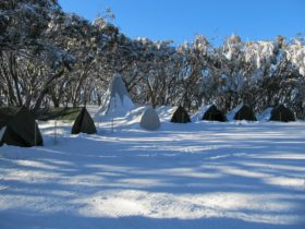 Mt Stirling Alpine Winter Camp