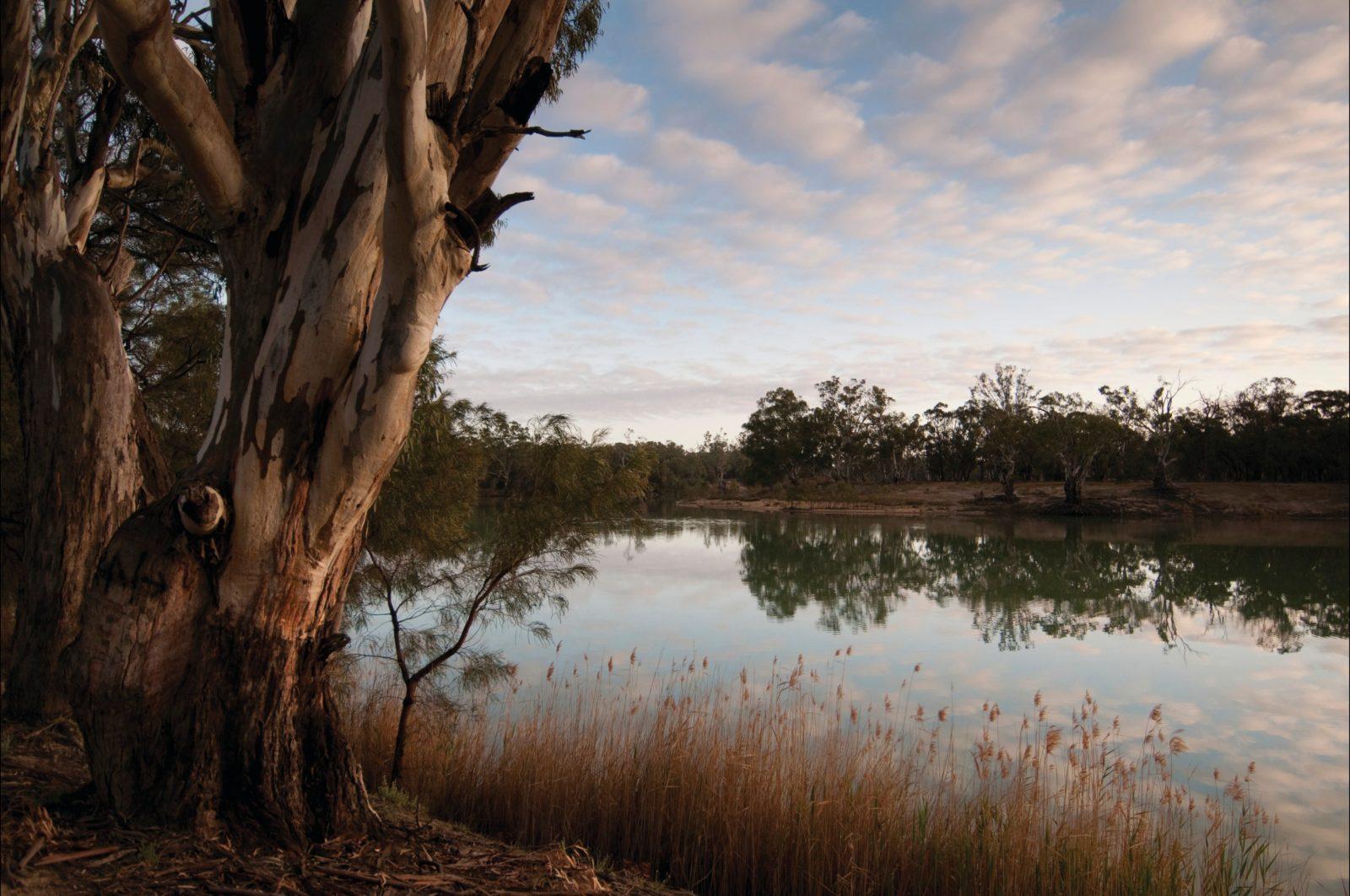 Murray-Kulkyne Regional Park