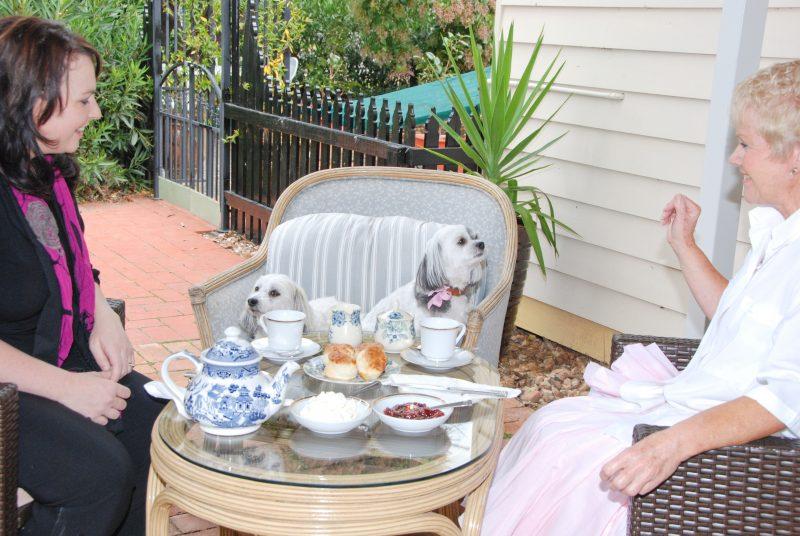 guests enjoying a dev tea.group bookings welcome