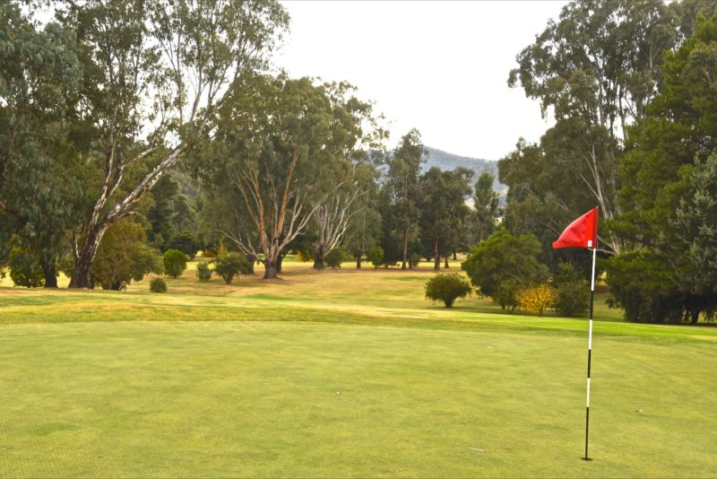Well maintained greens