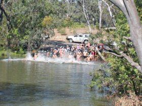 Nagambie on Water Festival Swim