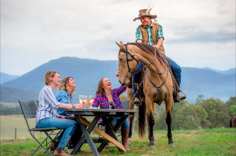 Horses, Food and Wine