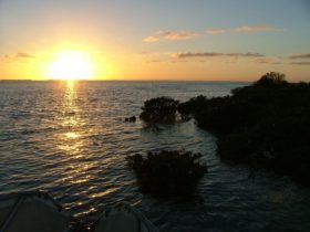 Nooramunga Marine & Coastal Parks