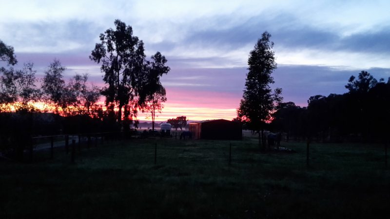 King Valley Experience North East