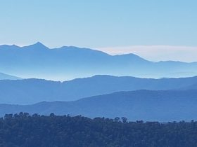 Alpine region from Powers Lookout