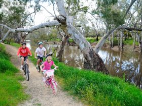 Echuca Destination