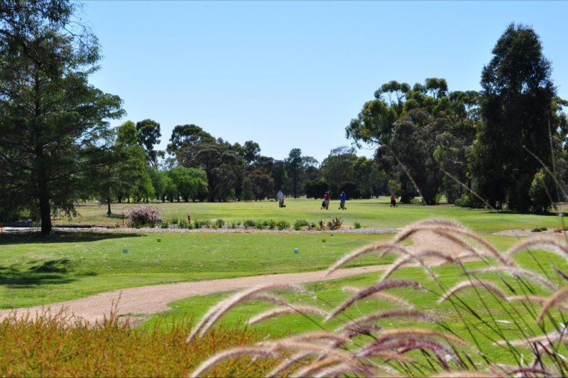 Numurkah Golf Club