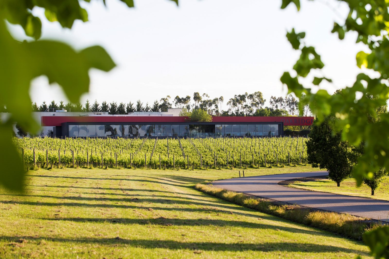 Oakridge Wines Yarra Valley