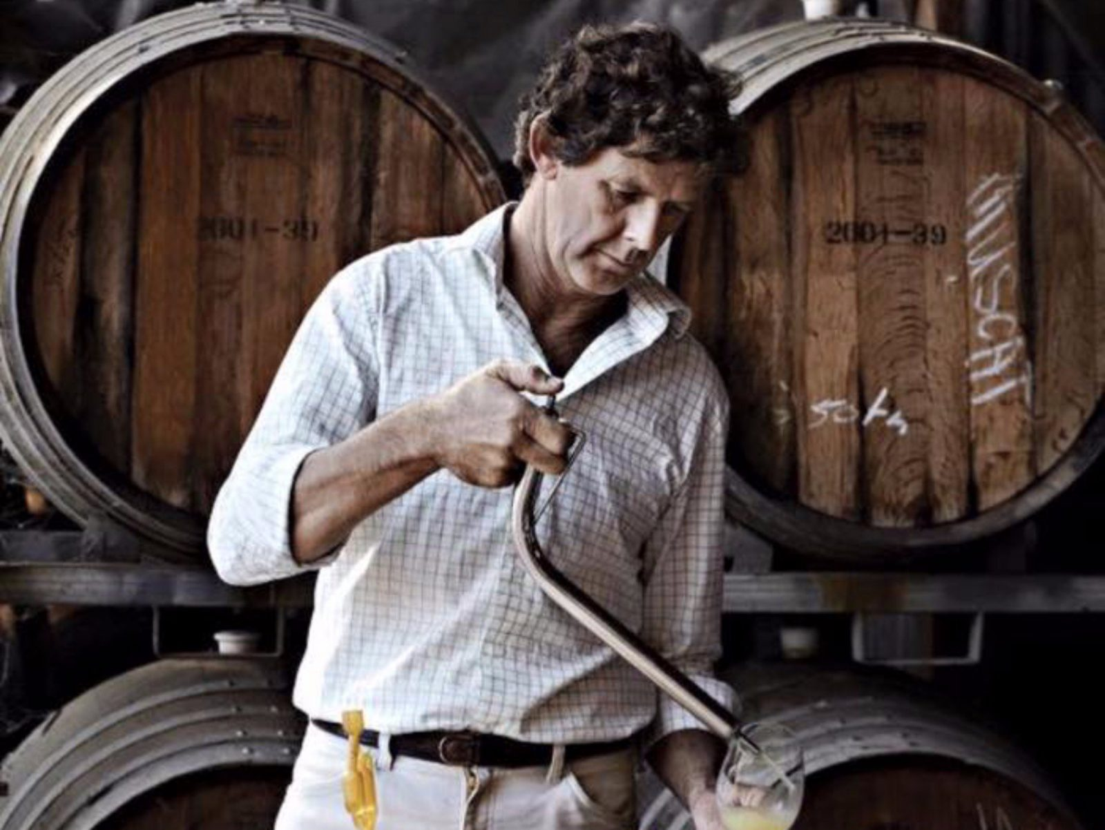Ross Perry Winemaker