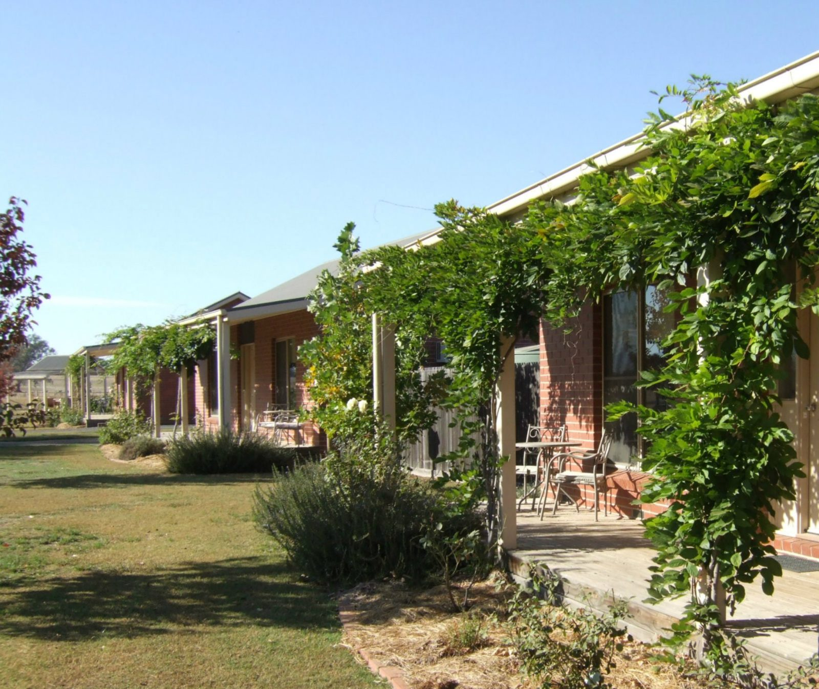 Face View of Cottages