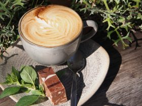 Paperbark Cafe - Yarra Coffee
